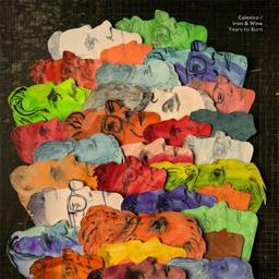 Years to burn / Calexico, Iron & Wine, groupe instr. et voc. | Calexico. Musicien