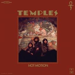 Hot motion / Temples, groupe instr. et voc. | Temples. Musicien