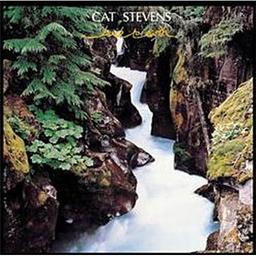 Back to earth / Cat Stevens, aut., comp., chant | Stevens, Cat. Parolier. Compositeur. Chanteur