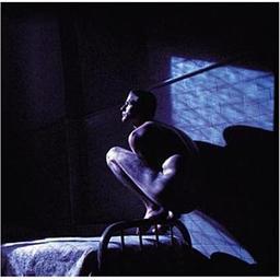 """Bande originale du film """"Birdy"""" / Peter Gabriel, comp.   Gabriel, Peter. Compositeur"""