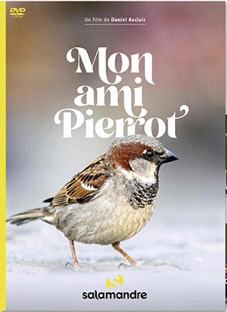 Mon ami Pierrot / Daniel Auclair, réal. |